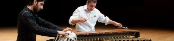 Rod Thomas Squance, marimba and Abbas Janmohamed, tabla