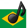 J& D Brazilian Project